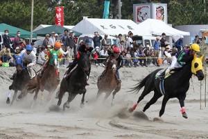 砂煙をあげて走る馬を間近で見ることができます