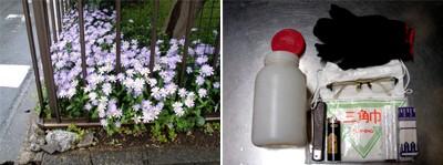 角地の庭隅。ここにファーストサバイバルキットを収めたプラスチックのボトルが埋められています