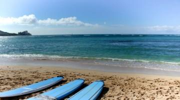 多くの人が海の遊びをいろいろ知っています。 では、海や水辺で行うオリンピックの競技はいくつあるでしょうか・・・