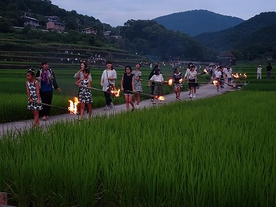 タイマツの火で虫をおびき寄せながら、あぜ道を歩く地域の人たち。遠くを見ると炎が揺らめいてきれいです