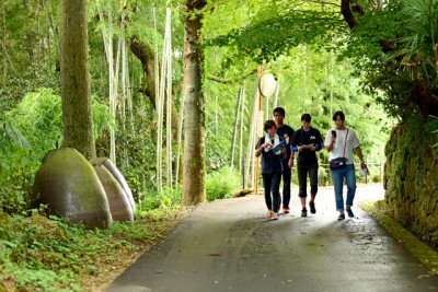 林道コースを散策中。森林浴にもなりますね