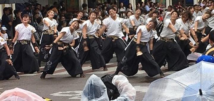 大人数でエキサイティングなよさこいを披露した早稲田大学の学生チーム。雨にも関らず、市内は演舞者と観客の熱気であふれました
