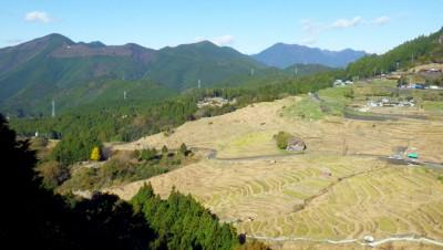 丸山千枚田:名前は千枚田ですが、1340枚あるそうです。 現在は、稲作体験など数多くのイベントが開催されています