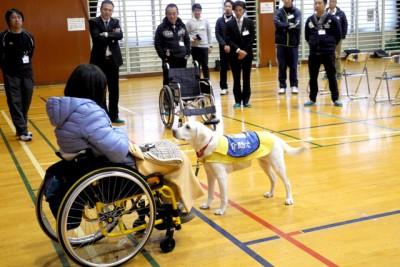 介助犬のサポート方法を実演