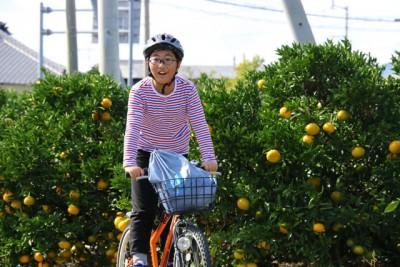 カンの色づく季節。中島ならではの景色