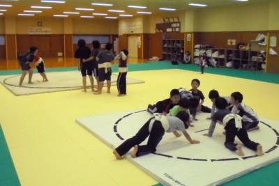 奥の土俵は取り組み、手前はトレーニングの腕立伏せ