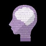 人間の横顔と脳の図