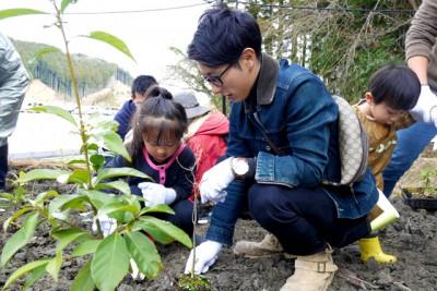 親子で植樹する様子。幼稚園の子供たちも数人参加してくれました。