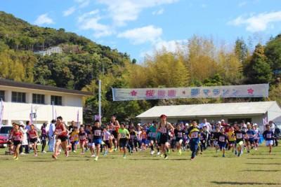 県内外から576人が参加した「2018 桜街道・夢マラソン」。スタートの様子