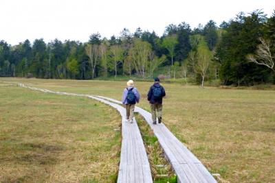 先日、祖父母と尾瀬にハイキングへ。足腰が元気なふたりはどんどん先に行ってしまい、気づけばここでも「ふたりの背中」を追いかけておりました。