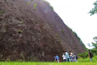 南紀ジオパークの「一枚岩」。国の天然記念物に指定されています