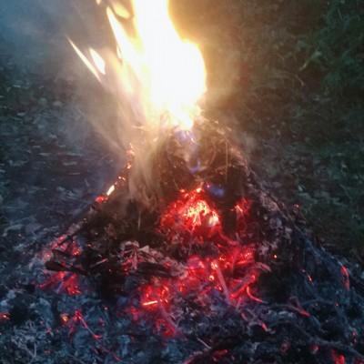 焚火の画像