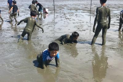 「うちの子どこかしら…泥だらけで分かりにくいなあ」