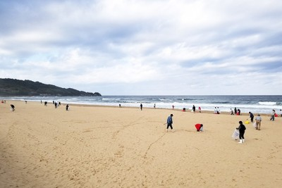 日本三大鳴き砂である琴ヶ浜でもこうして清掃活動を実施