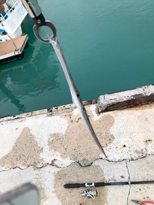 沖縄の養成研修休務日に釣ったアオヤガラ