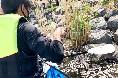カヌーに乗った川の清掃活動